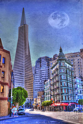 San Francisco Transamerica Pyramid And Columbus Tower View From North Beach Poster by Juli Scalzi