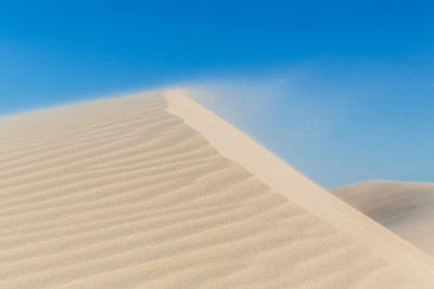 Sand Blowing Off A Dune Poster