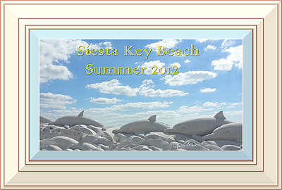 Sand Dolphins - Digitally Framed Poster by Susan Molnar