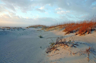 Sand Dune On Tybee Island Poster by Allen Carroll