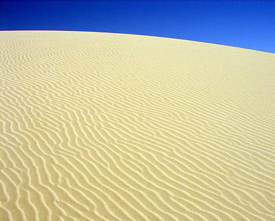 Sand Dune Poster by Ramona Johnston