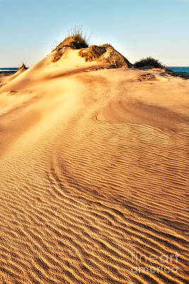 Sand Dune Textures - Outer Banks I Poster by Dan Carmichael