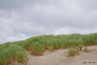 Sand Dunes And Grass Poster