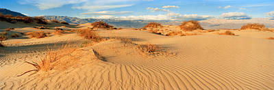 Sand Dunes In A National Park, Mesquite Poster by Panoramic Images