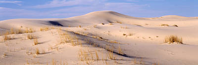 Sand Dunes On An Arid Landscape Poster by Panoramic Images