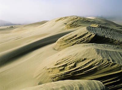 Sand Patterns Created By The Wind Poster by Robert L. Potts
