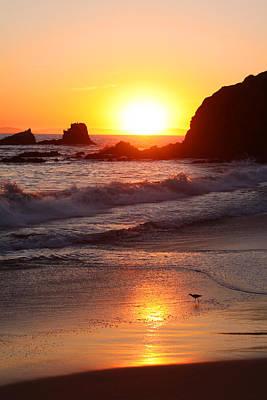 Sandpiper Sunset Poster
