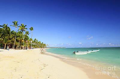 Sandy Beach On Caribbean Resort  Poster by Elena Elisseeva