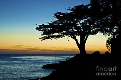Santa Cruz California 3 Poster by Micah May