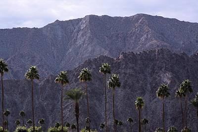 Santa Rosa Mountains Poster