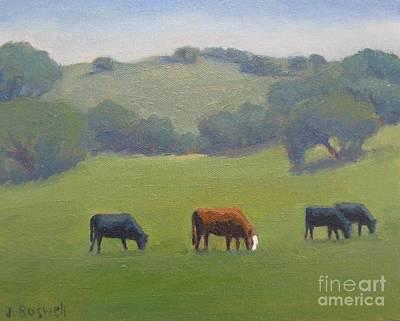 Santa Ynez Cows Poster