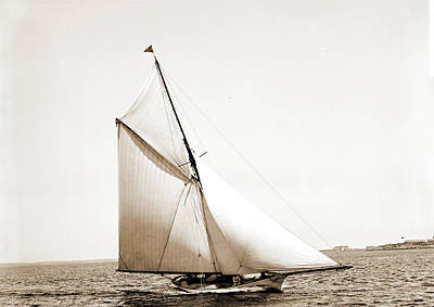 Saracen, Saracen Yacht, Yachts Poster by Litz Collection