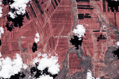 Satellite View Of Fields, Chihuahua Poster