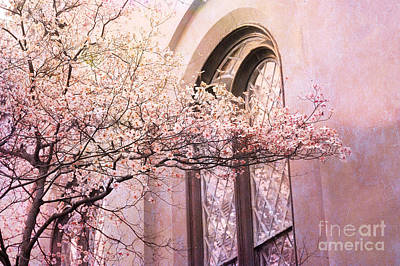 Savannah Georgia Church Window With Pink Floral Trees Nature  Poster by Kathy Fornal