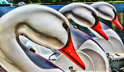 Save A Horse Ride A Swan Lake Eola By Diana Sainz Poster by Diana Sainz