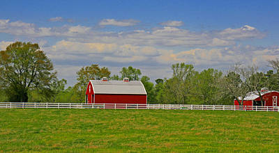 Poster featuring the photograph Sc Horse Farm by Andy Lawless