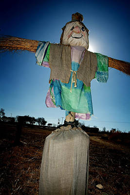 Scarecrow In Filed Poster