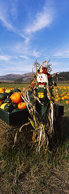 Scarecrow In Pumpkin Patch, Half Moon Poster by Panoramic Images