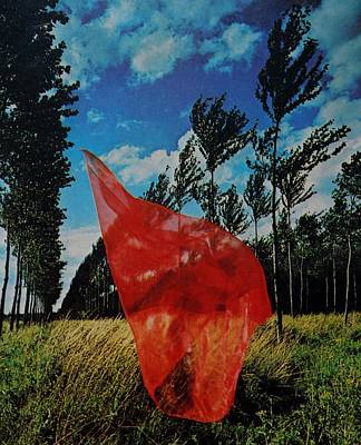 Scarf In The Winds Poster
