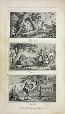 Scenes Of Industry Displayed In The Bee-h Poster by British Library