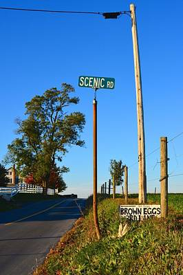 Scenic Road With Brown Eggs 3rd Lane Poster