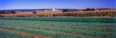 Scenic View Of A Farm, Pennsylvania Poster