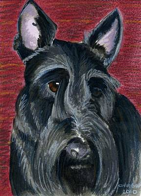 Scottish Terrier Poster by Christine Winship
