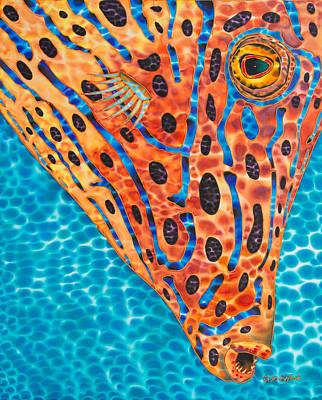 Scrawled File Fish Poster