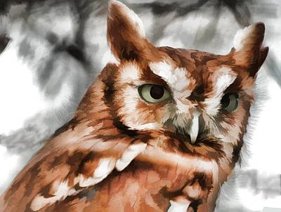 Poster featuring the photograph Screech Owl Photo Art by Constantine Gregory