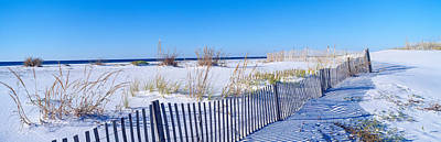 Sea Oats And Fence Along White Sand Poster