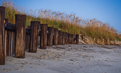 Sea Oats And Pilings Poster