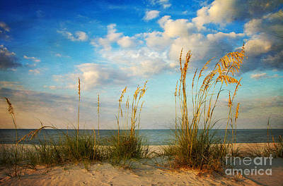 Sea Oats At Sunset Poster by Joan McCool