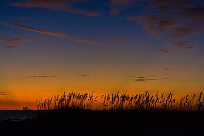 Sea Oats At Twilight Poster