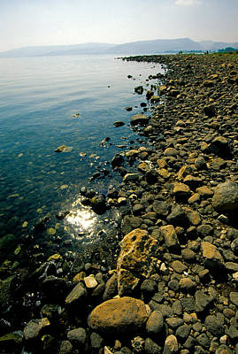 Sea Of Galilee Shore Poster by Dennis Cox WorldViews