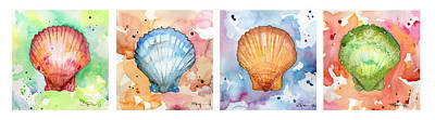 Sea Shells In Contrast Poster
