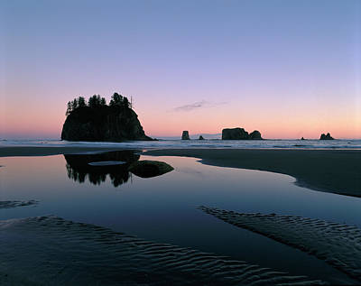 Sea Stacks Reflecting In Tidal Pools Poster by Panoramic Images