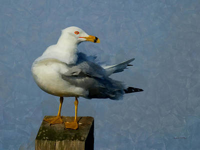 Seagull Digital Painting Poster by Ernie Echols