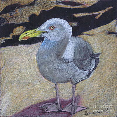 Poster featuring the painting Seagull On The Rocks by Susan Herbst