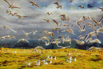 Poster featuring the digital art Seagulls Of Protection Island by Kai Saarto
