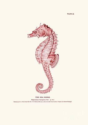 Seahorse Pink Vintage Poster by Patruschka Hetterschij