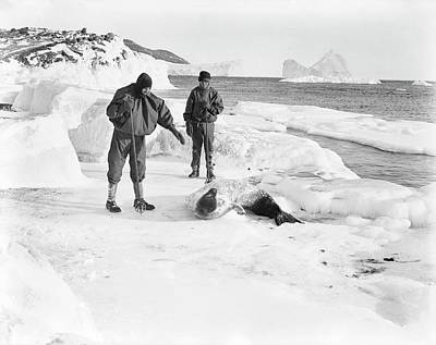 Seal Research In Antarctica Poster
