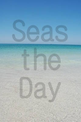 Seas The Day Poster by May Photography
