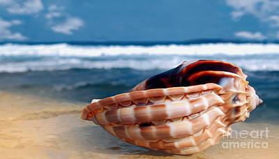 Seashell Before Blue Ocean Poster