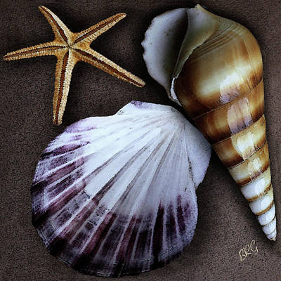 Seashells Spectacular No 37 Poster by Ben and Raisa Gertsberg