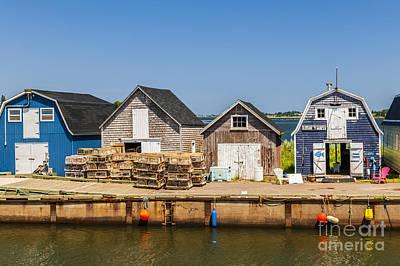 Seaside Dock Of Prince Edward Island Poster