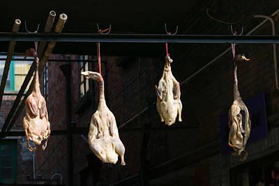 Seasoning Peking Ducks Hanging For Sale Poster