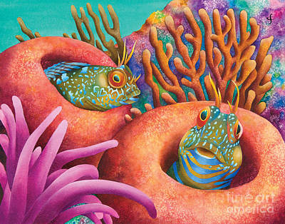 Seaweed Blennies Poster by Carolyn Steele