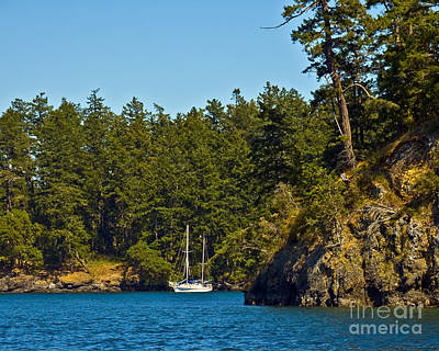 Secluded Anchorage Poster by Chuck Flewelling