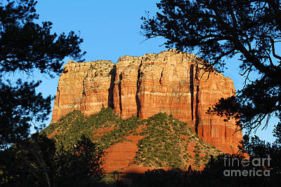 Sedona Courthouse Butte  Poster by Eva Kaufman