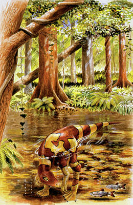 Segnosaurus Dinosaur Poster